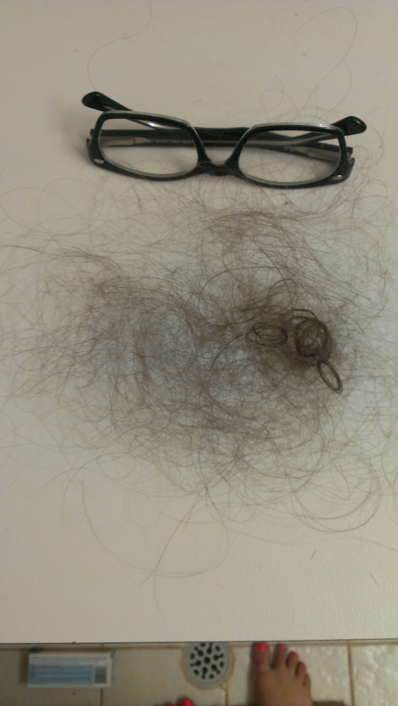 Standard hairloss for my bi-weekly shower in which  I wash my hair